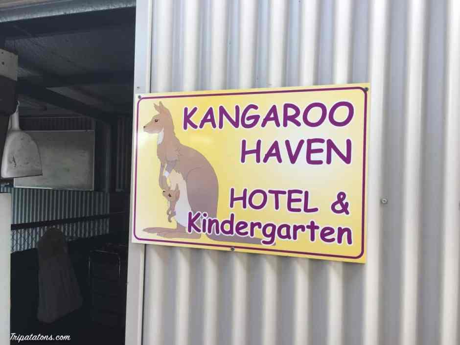 kangaroo-haven-sign