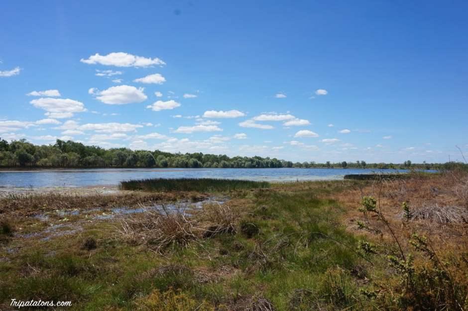 jabiru-lake