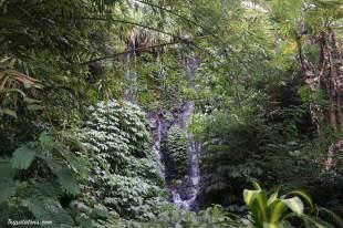 gitgit-falls-5