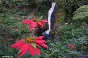 gitgit-falls-8