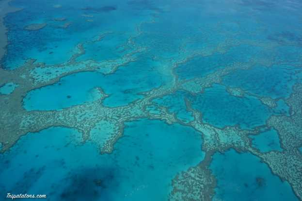 great-barrier-reef-4