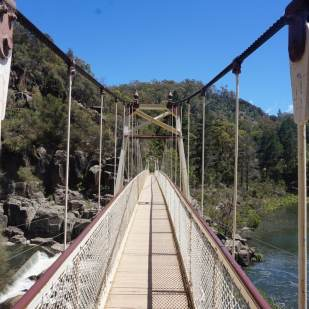 Alexandra Suspension Brige (3)