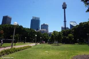 Eye Tower