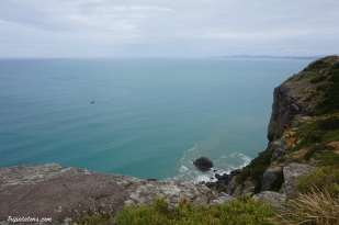 The Nut State Reserve (2)