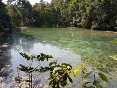 esmerald-pool-jungle-4