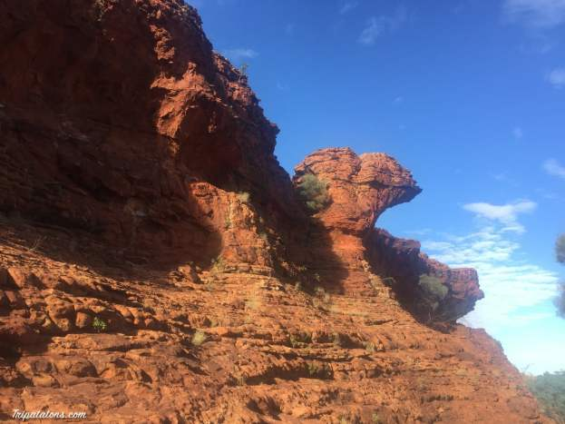 kings-canyon-9