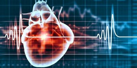 Frequenza cardiaca massima
