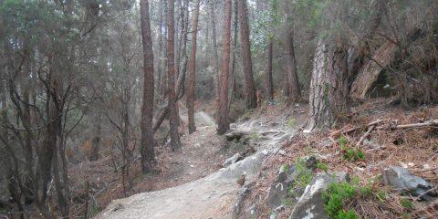 sentiero delle prove speciali di calci