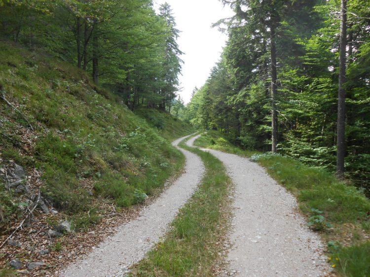 strada sterrata nei pressi di nals - percorso tra i castelli