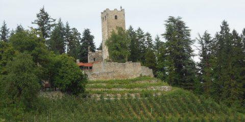 castelli di nals mtb