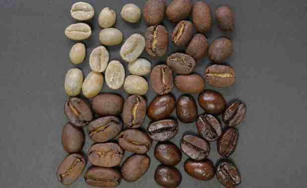Various Roast Shades