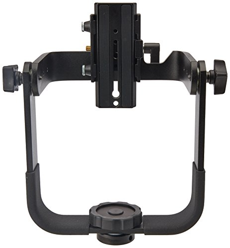 Manfrotto 244 Variable Friction Magic Arm with Camera Bracket Replaces 2929,Black