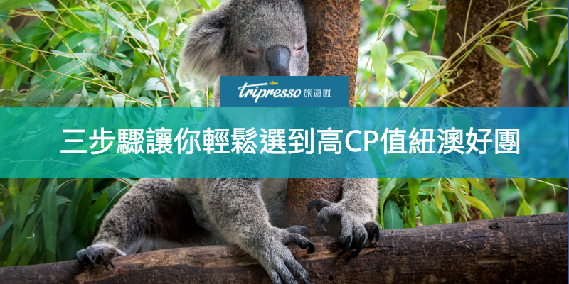 澳洲紐西蘭跟團怎麼選?想清楚這三個問題,就能輕鬆選到高CP值好團!