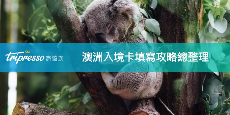 澳洲入境卡 到底怎麼填?想看萌無尾熊之前,你要先搞懂這些!