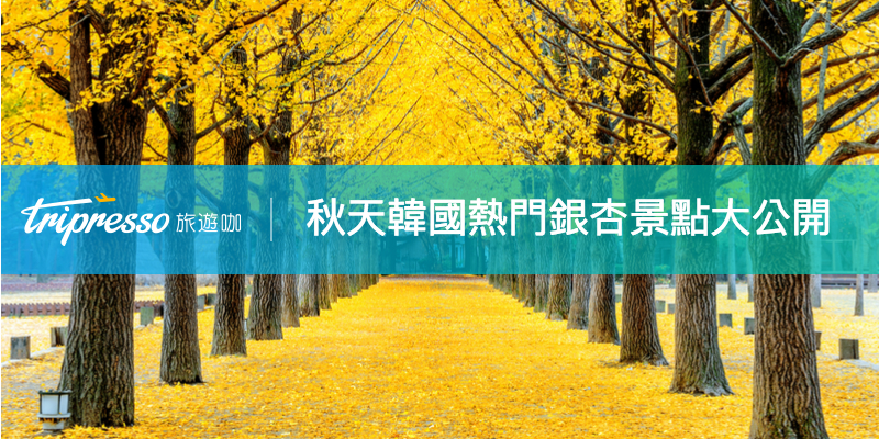 【韓國賞銀杏】楓葉、銀杏通通有!秋天韓國熱門 銀杏 景點告訴你~