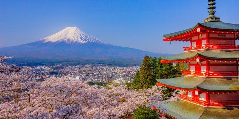 【日本櫻花】2019富士山櫻花搶先看!熱門景點、人氣美食推薦大公開
