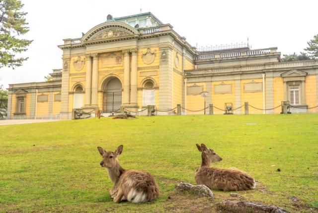 奈良國立博物館