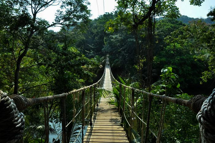 Welcome to The Warm and Charming Land of Honduras