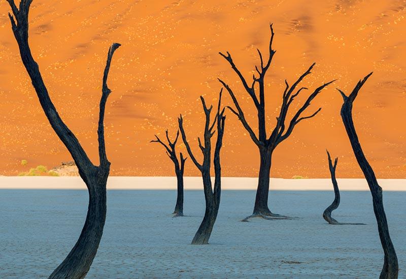 Dead Vlei in Namib-Naukluft Park, Namibia