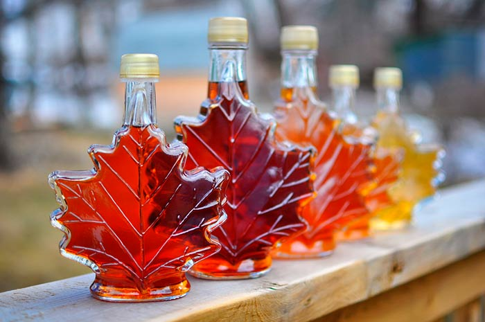 Maple Syrup Festival