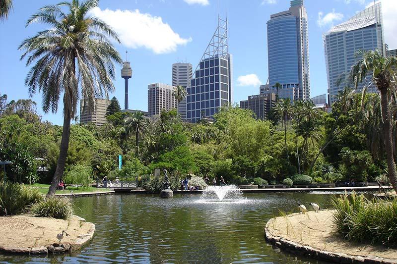 Sydney's Royal Botanic Gardens