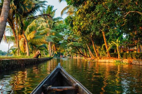 Image result for Kollam Backwaters