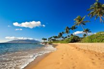 9 maui vacation rentals