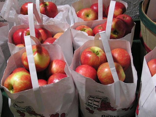 Indian tariffs on American apples is killing their farming