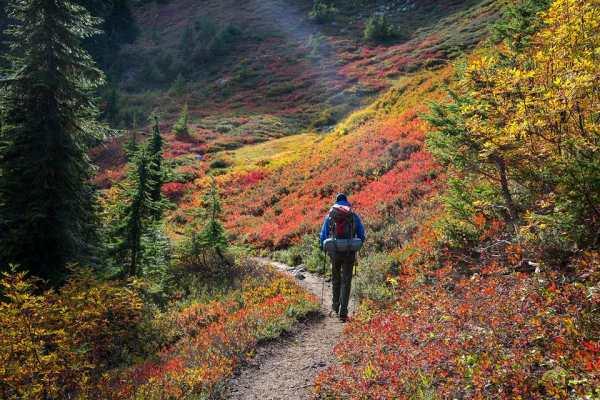fall foliage tours and drives
