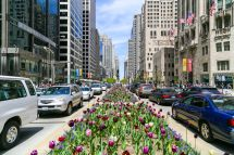 Chicago' Magnificent Mile Complete Guide