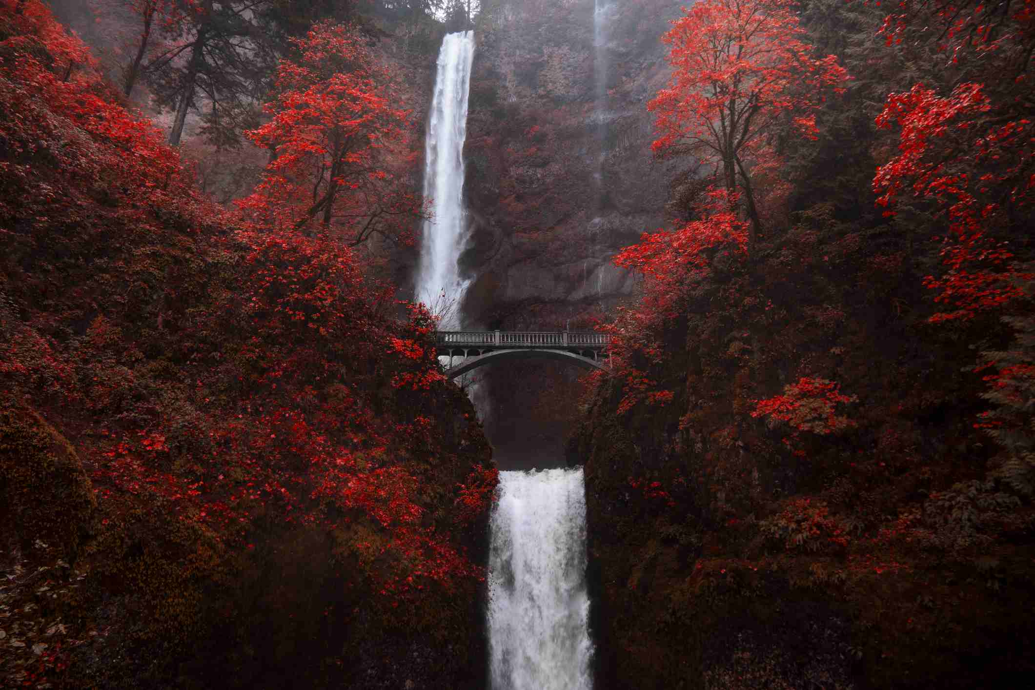 Fall Floiage Wallpaper Best Places To See Fall Foliage In The Pacific Northwest