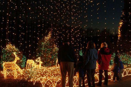 discover brookside gardens christmas