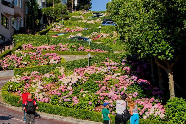 Visit Lombard Street