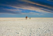Visit Great Rann Of Kutch Essential Travel Guide