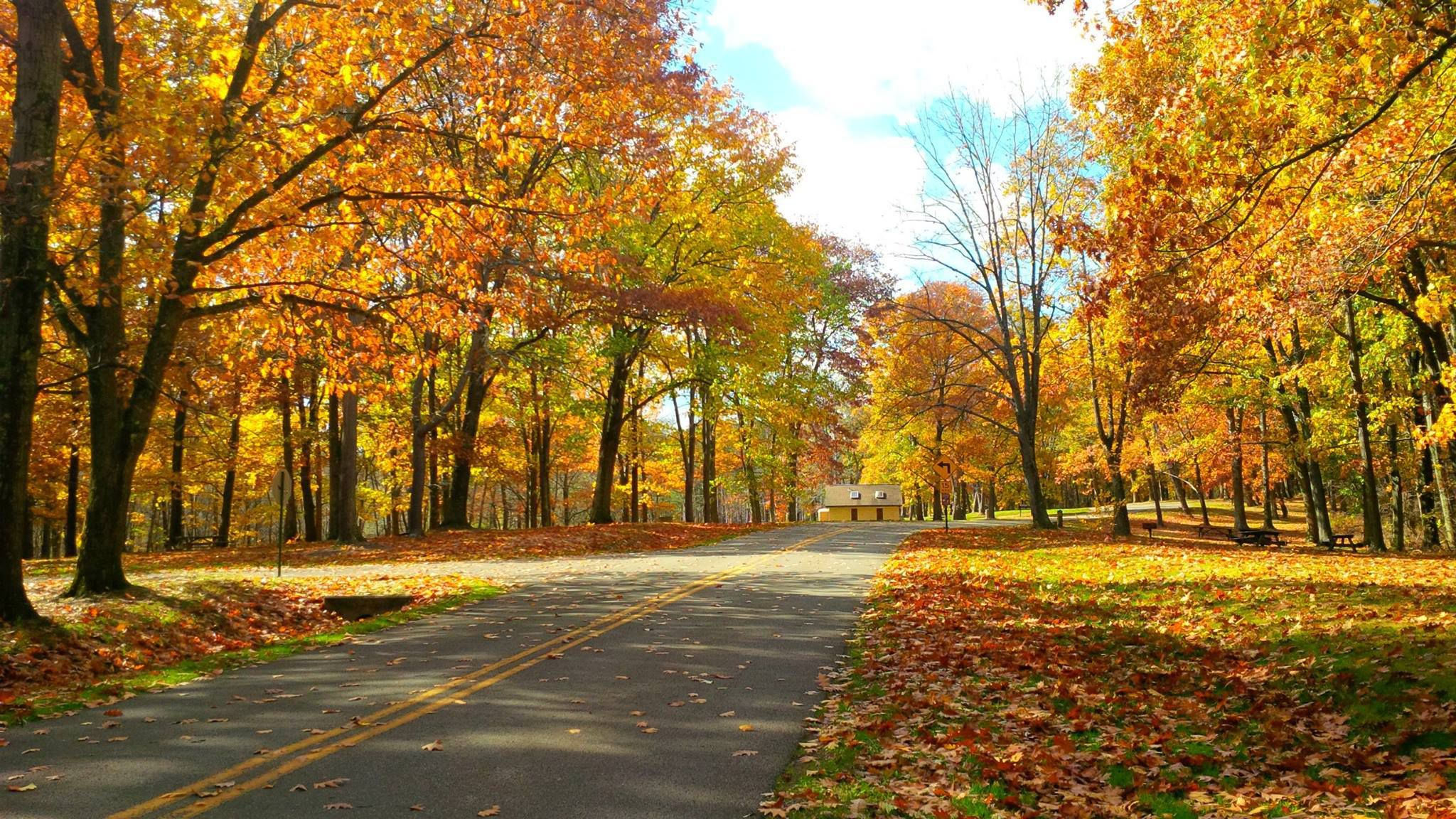 6 Best Fall Foliage Drives In Western Pennsylvania