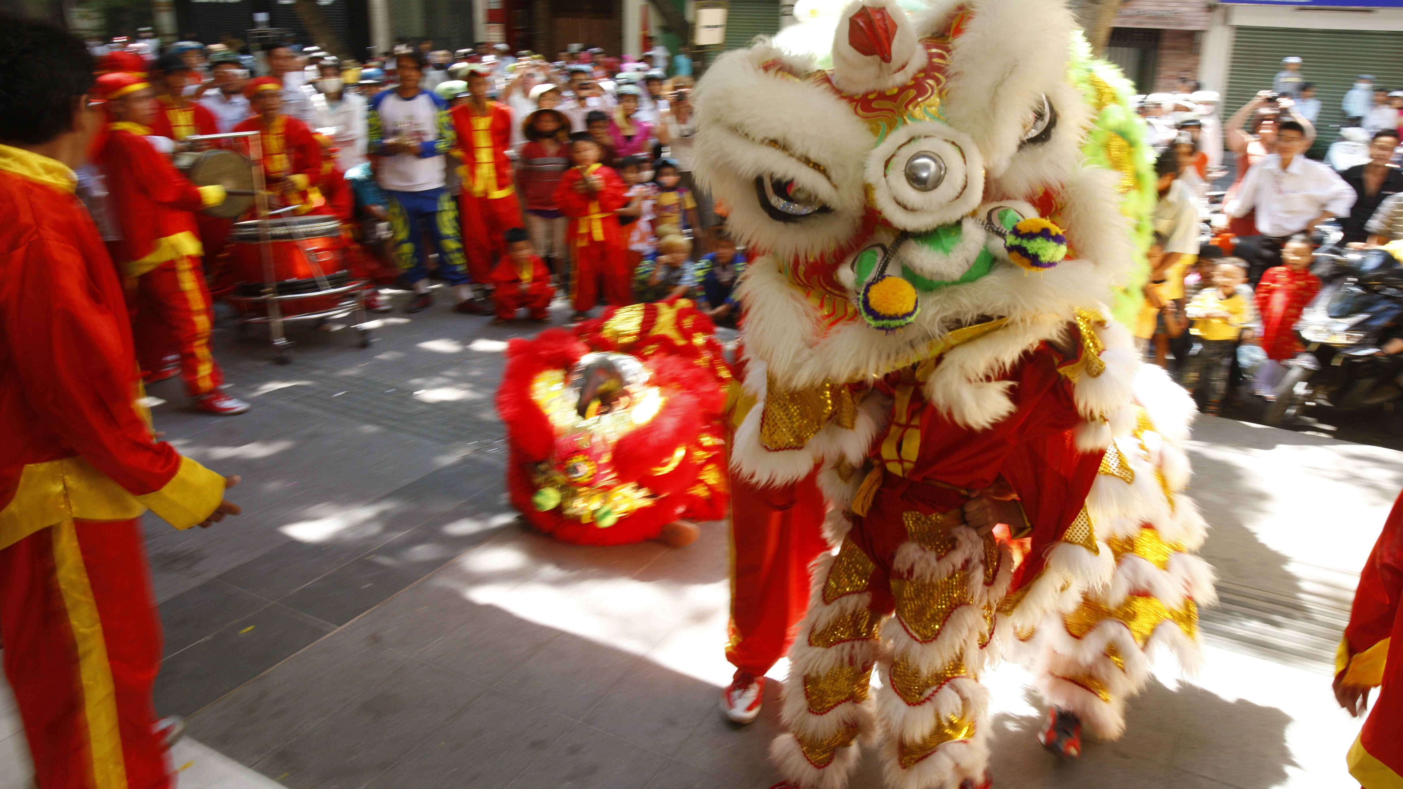 chinese lion or dragon