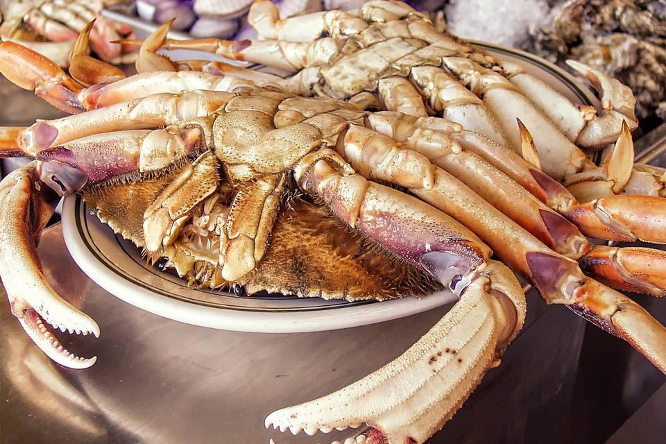 Fresh Shrimp San Francisco