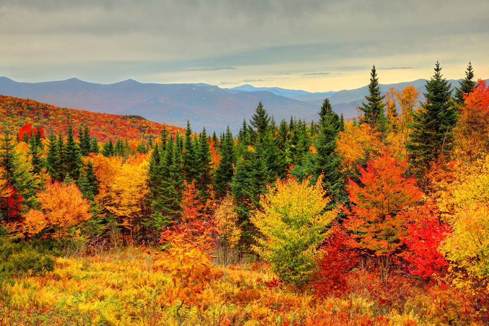 Fall Wallpapers For Desktop Idaho Golf How To See New England Fall Foliage At Its Peak