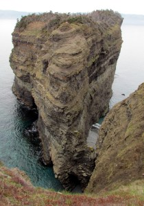 As we walked towards the cliffs of Bell Island we were in total awe! It was awesome! Gulls perched on the rocky structure and the cliffs were several hundred feet high!