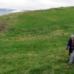 Lovely green grass hills along the cliffs of Bell Island