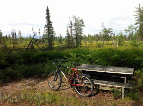 It is a great ride through the bog of the Park. The whole circuit is very flat so there is mostly easy pedalling and there are some great places to sight birds and animals along the trail. I only saw a flock of black flies this time!