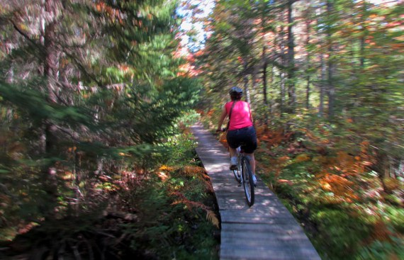 We did a bike ride of 21.4 km at Kouchibouguak National Park including the Major Kollock trail which was a real kidney pounding ride. It seems to get longer every time we do the ride. We forgot to bring snacks so it's a good thing we had a big breakfast!