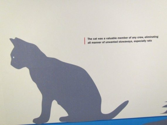 The shadow of a cat at one of the exhibit at the National Bermuda  Museum.