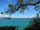 Bermuda Aquarium and Zoo: A Very Special Place for Us