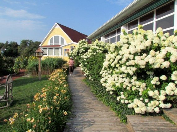 The boardwalk from the restaurant to the garden was so sweetly perfumed with the huge flower blooms!