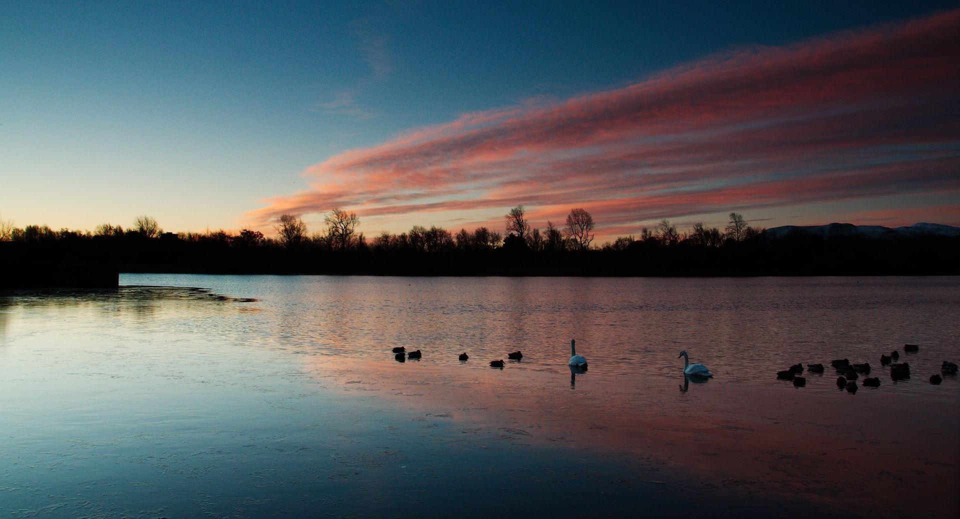 Duddingston Loch aamuvarhaisella. ©Magnus Hagdorn, Flickr CC BY-SA 2.0