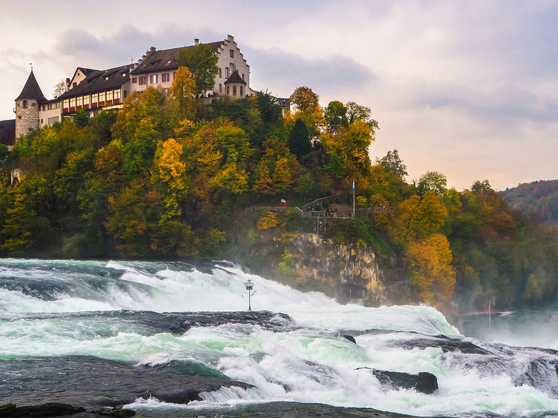 Beautiful nature with the water fall (Rhine Falls) Switzerland.