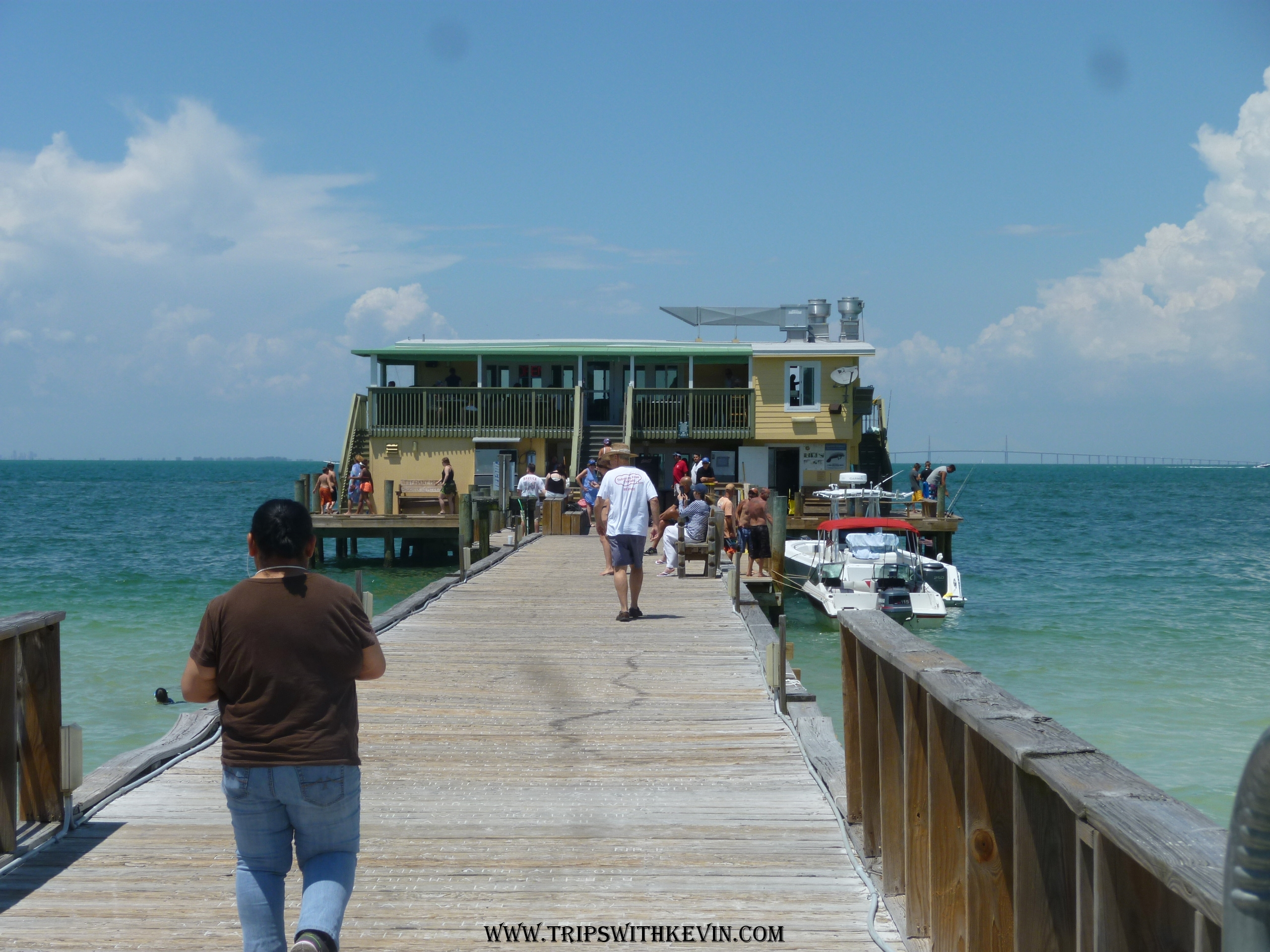 June 2016 trips with kevin for Anna maria island fishing pier