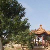 حدائق الملك حسين