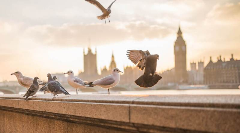 London for Free Itinerary